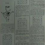 Играют зарубежные мастера шашек