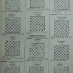 Итоги выступлений мастеров шашечной композиции