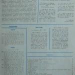 Н.И. Дрозд: спортивные и творческие успехи